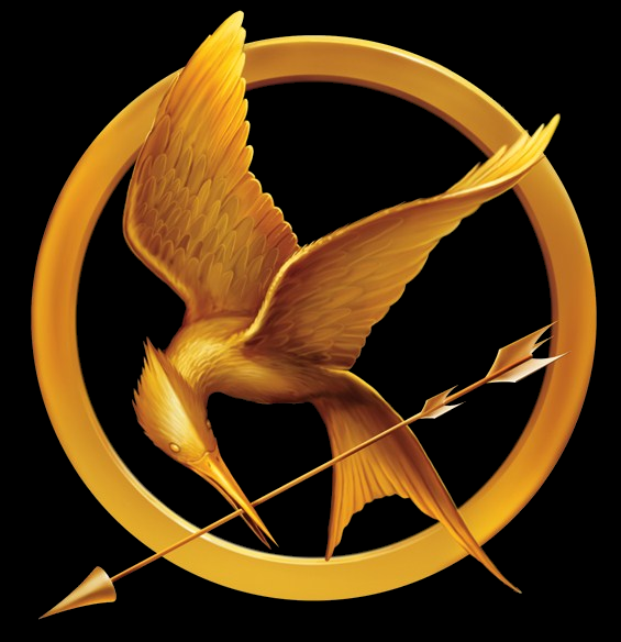 hunger-game-gai-moqueur-png